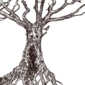 Albero secolare disegno con procreate di Luca Sanna