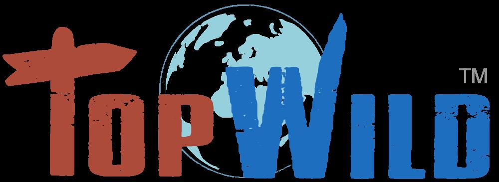 top wild logo design - lucasanna