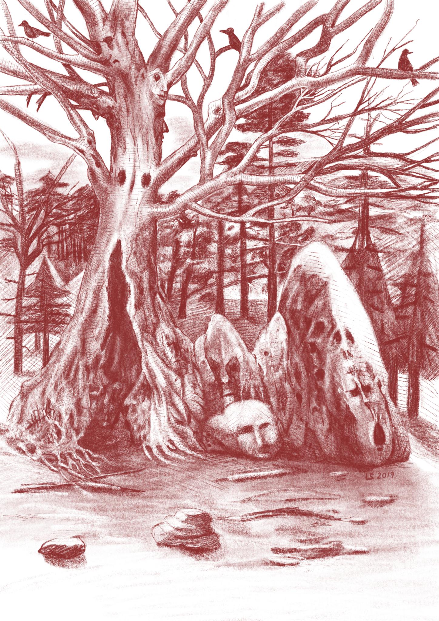 Passeggiata nel bosco incantato